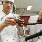 Australia Compete in Pastry World Cup