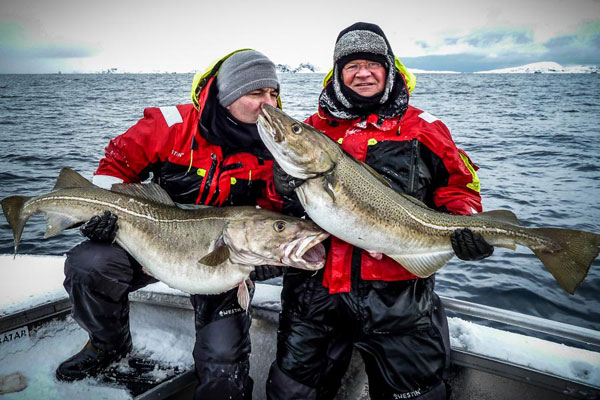 Skrei Cod Keeps Giving