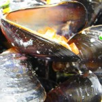 Irish Organic Mussel Soup Shortlisted